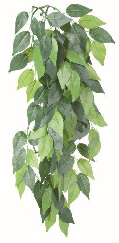 Trixie Seiden-H�ngepflanze, Ficus, � 20 � 50 cm