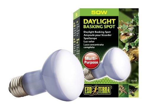 Exo Terra PT2131 Daylight Basking Spot - Breitspektrum-Tageslichtlampe f�r Terrarien R20/50W
