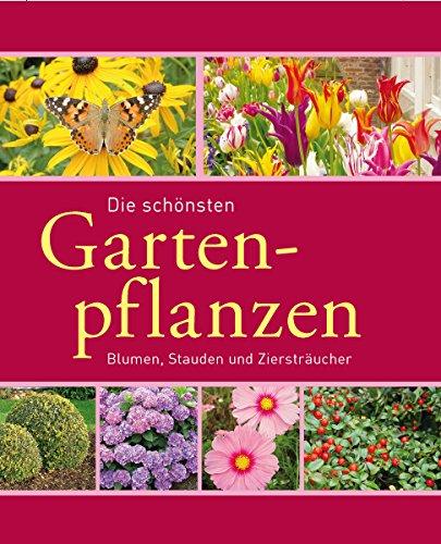 Die sch�nsten Gartenpflanzen: Blumen, Stauden und Zierstr�ucher (Gartenpraxis und -gestaltung)