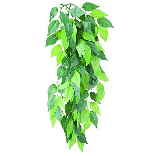 Trixie 76239 Seiden-H�ngepflanze, Ficus, � 20 � 30 cm