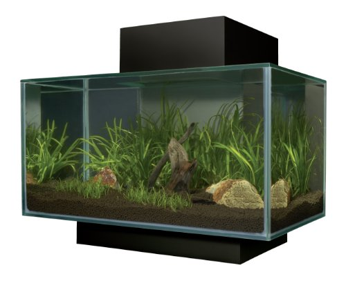 Fluval 15397 - Edge Nano Aquarium, schwarz