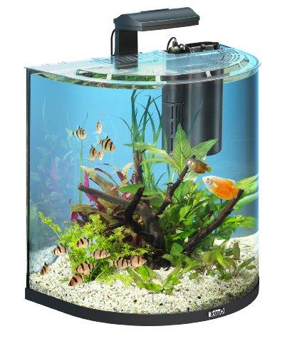 Tetra AquaArt Explorer Line Aquarium Komplett-Set 60 Liter anthrazit (gew�lbte Frontscheibe, langlebige LED-Beleuchtung, ideal f�r die Haltung von tropischen Zierfischen)