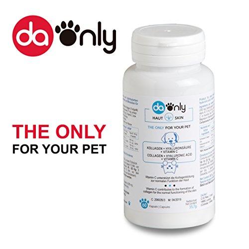 Nat�rliche Nahrungserg�nzung f�r die Haut Ihres Haustieres, Kollagen f�r Haut & Hyalurons�ure f�r Hund und Katze, Kollagen zur Linderung von Dermatitis bei Hunden, Kollagen + Hyalurons�ure und Vitamine f�r Hunde DAONLY