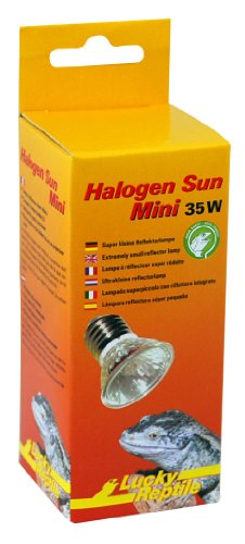 Lucky Reptile HSM-35 Halogen Sun Mini 35 W Doppelpackung, W�rmestrahler f�r E27 Fassung